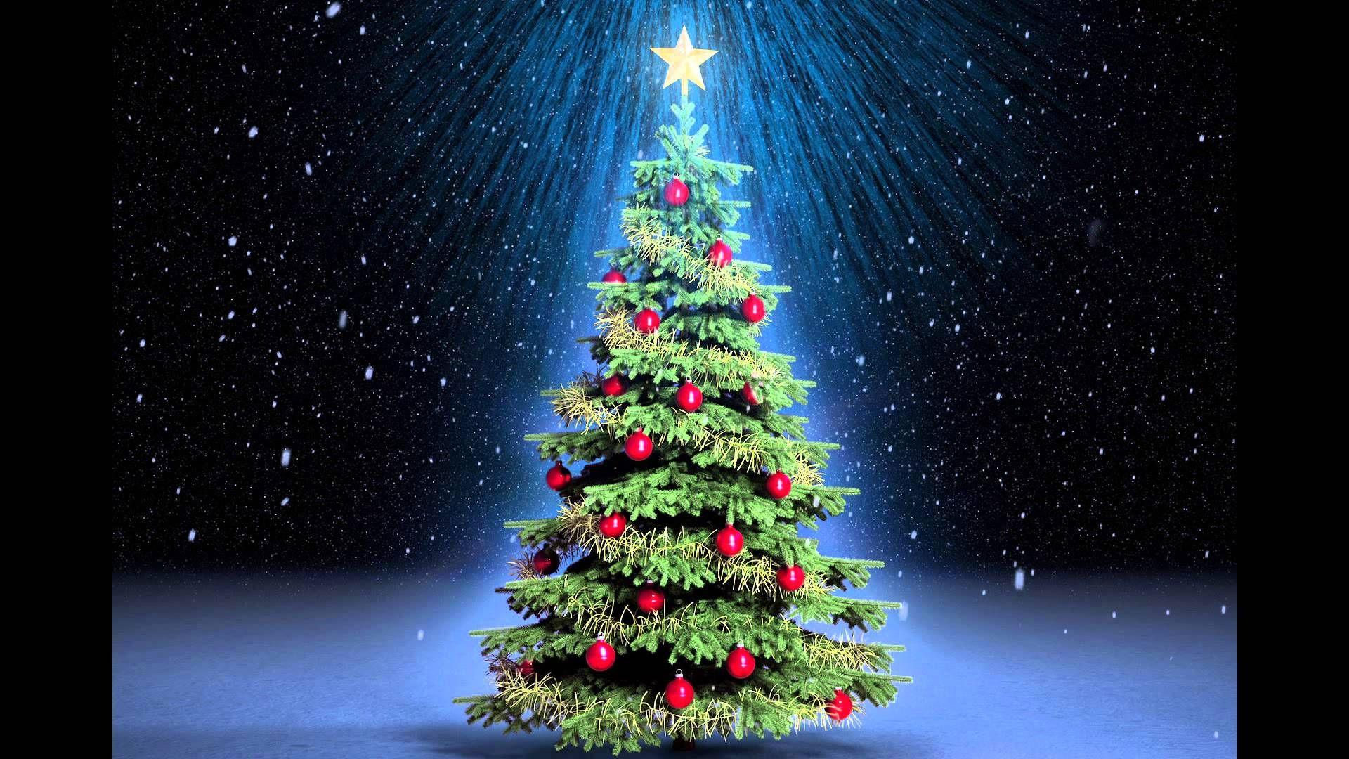 Audiocuento El Arbolito De Navidad