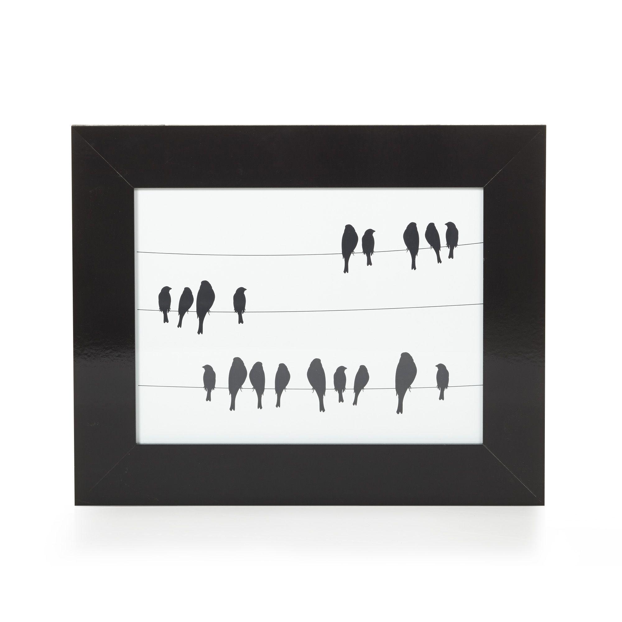 Image Encadrée 38x48cm Les Oiseaux Noir Et Blanc Sifflet