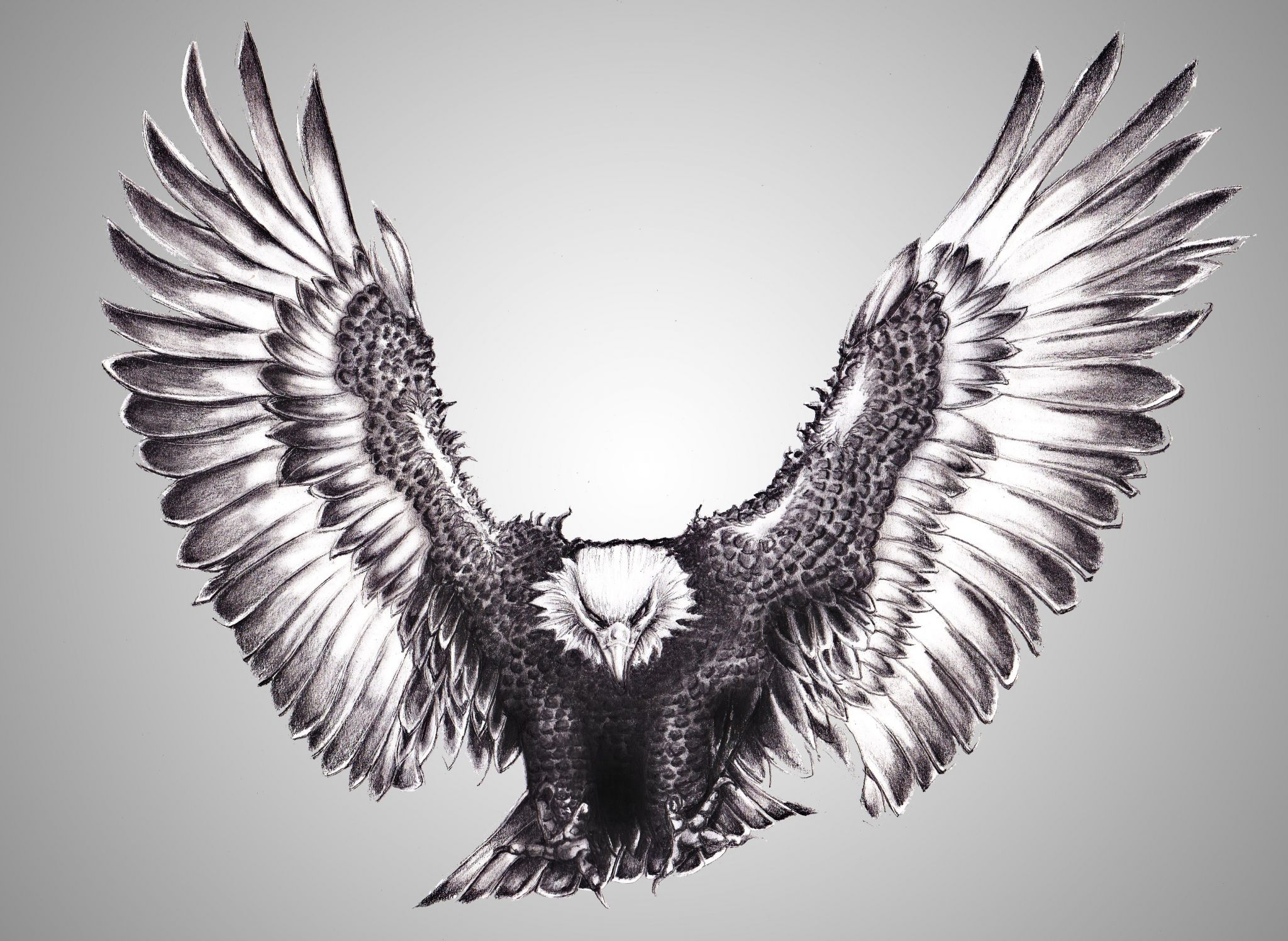 Eagle Pc Backgrounds Hd Free Eagle Neck Tattoo Eagle Tattoos Bald Eagle Tattoos Eagle tattoo wallpaper free download