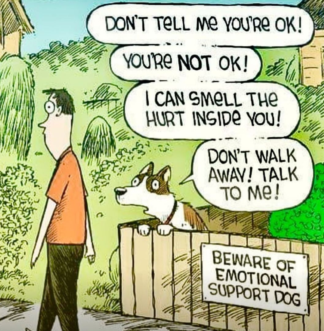 Image of: Esa Anyone Who Knows Me Knows Im Crazy Dog Mom My Pitty Is The Biggest Support The Cagle Post Pin By Jennifer Manlowe On Favorite Cartoons Ecards Pinterest