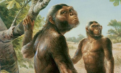 Evolución Del Hombre Resumen Origen Y Características Profeenhistoria Evolucion Del Hombre Prehistoria Fauna De áfrica