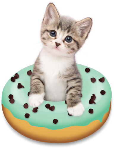 Doughnut Kitten By Tania Hennessy Cats And Kittens Cat Collage Cute Cats