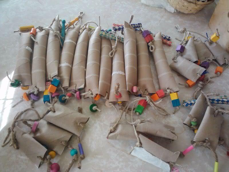 Foraging toys many many hours worth homemade bird