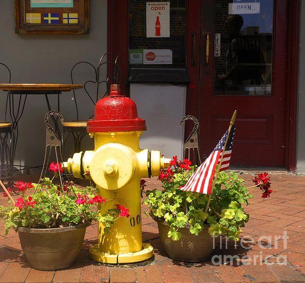 Savannah Fire Hydrant - Sherry Dooley