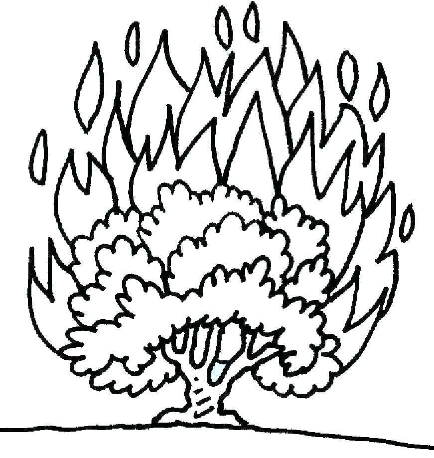 Moses and the Burning Bush Coloring Page Best Of Free ...