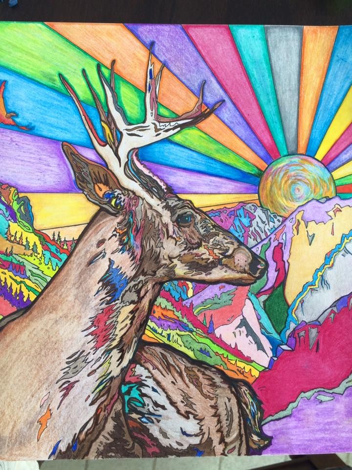 Coloured By Kerry Mcdonough From Legendary Landscapes Adult Coloring Book