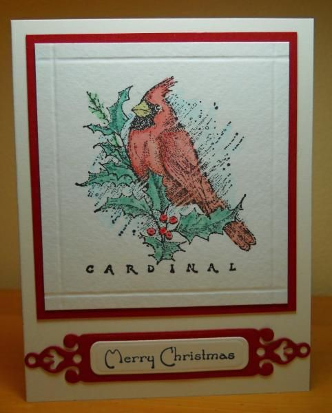 Cardinal for Queen Diane by susanbri - Cards and Paper Crafts at Splitcoaststampers