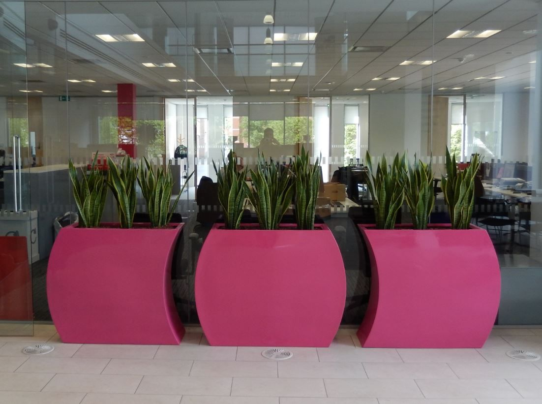 office plant displays. Office Breakout Area With Curvy Trough Plant Displays A