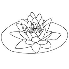 Top 47 Free Printable Flowers Coloring Pages Online Flower