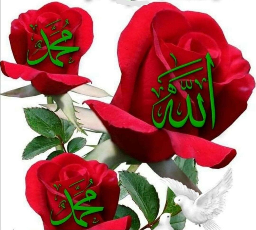 Pin By Soniya On Allah Allah Wallpaper Islamic Pictures Christmas Ornaments