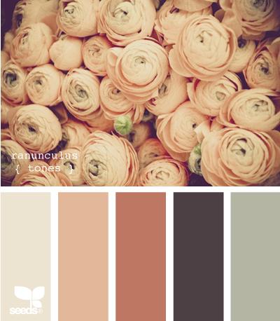 ranunculus tones  http://design-seeds.com/index.php/P120