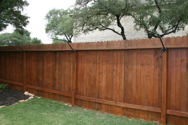 cat proof fence - Google Search