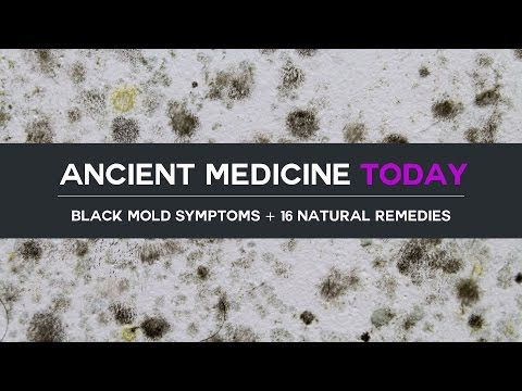 black mold symptoms u0026 16 natural remedies by dr josh axe on youtube - Exposure To Black Mold