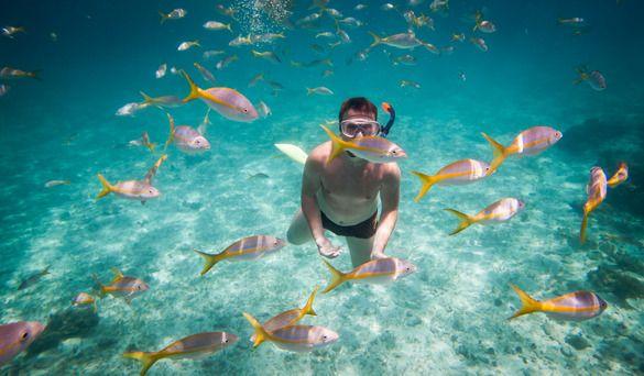 Fun Things To Do In Panama City Beach Activities