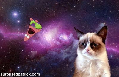 Grumpy Cat And Patrick Grumpy Cat Humor Cat Wallpaper Cat Pics