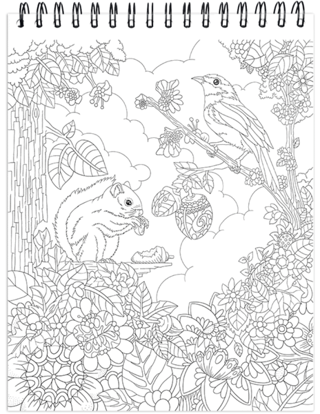 Nature Coloring Book For Adults With Hardback Covers Spiral Binding Colorit Coloring Books How To Draw Hands Nature Inspired Design