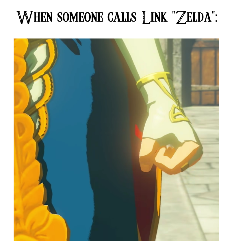"When someone calls Link ""Zelda"" 