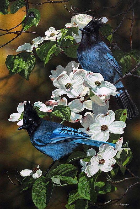 JULIA HARGREAVES ART