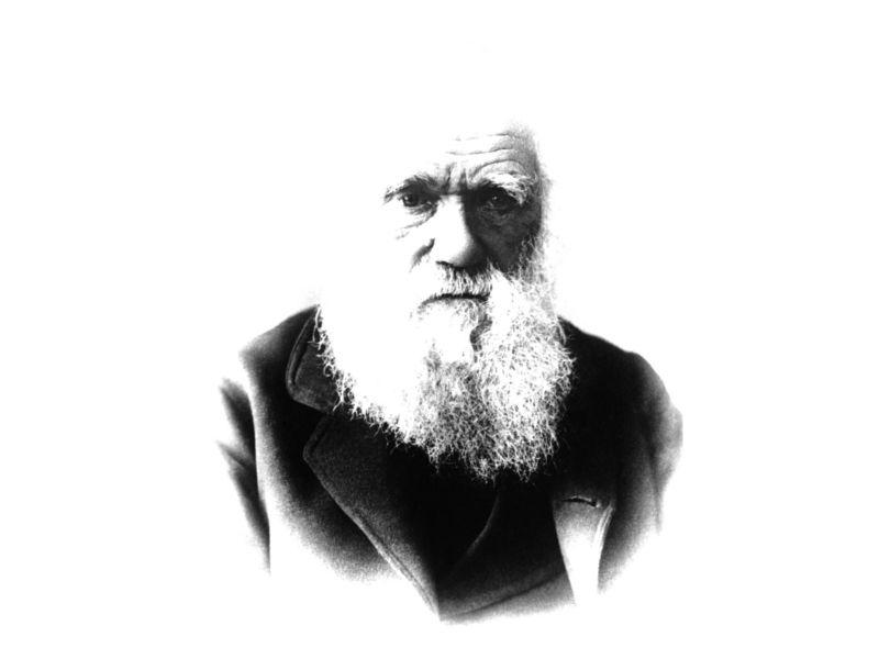 Evolusjonismens uvitenskapelige opphav – Skaper