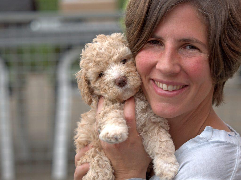 Seidensticker Fotografie Hundefotografie Lagotto Romagnolo Lagotto Romagnolo Cute Dogs Water Dog