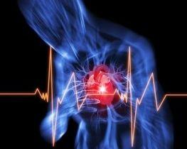 Detak Jantung Cepat Gejala Penyakit Apa Jantung Berdebar Kencang Dan Badan Lemas Jantung Berdebar Tanpa Sebab Terimakasih Sudah Memb Curar Medicos Corazones