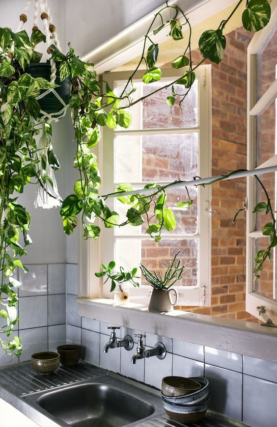 finast i veckan en grön spaljé florence och inredningstips bohemiskt kök hus och drömkök on zink outdoor kitchen id=80149