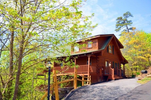 Sun Shining Through Trees Looking Up At The Blue Sky At A Secluded Gatlinburg  Cabin Rental | Gatlinburg Cabins | Pinterest | Pigeon Forge Tn, Pigeon  Forge ...