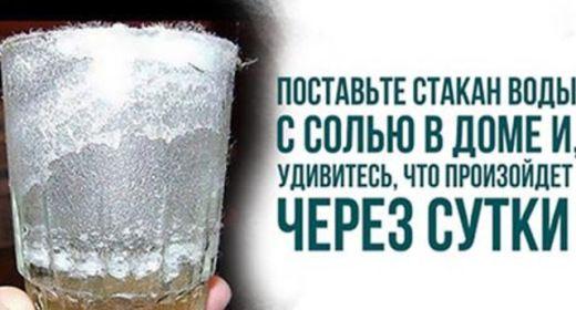 Поставьте дома стакан с водой, солью и уксусом. Через ...