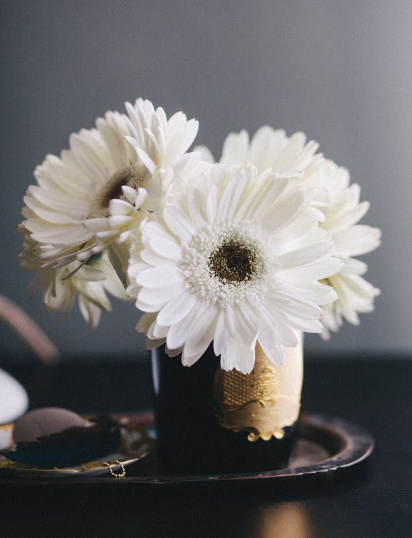 White Gerbera Dasies Use A Small Container Vase To Keep