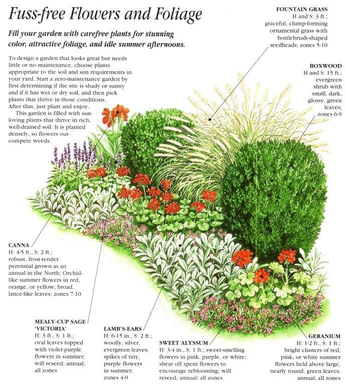 Low Maintenance Garden Layout Idea