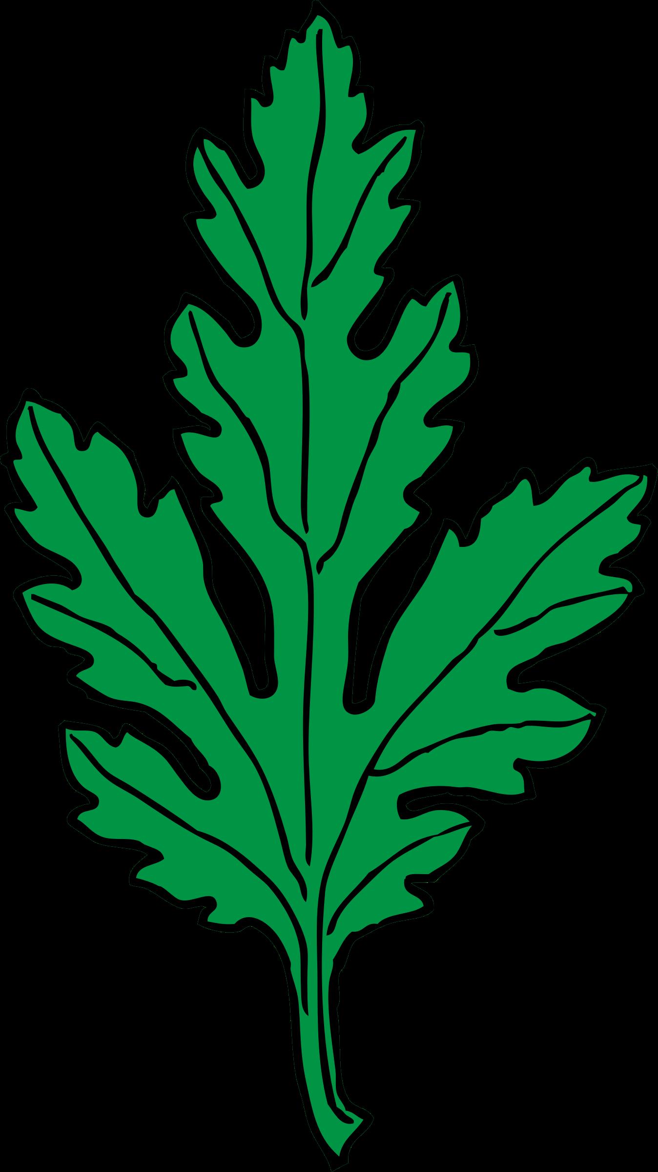Картинки листок от ромашки