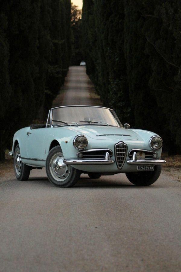 Love of My Life! 1962 Alfa Romeo Giulia Spider Convertible in baby blue! #AlfaRo…
