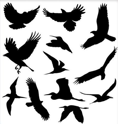 50 Free High Quality Silhouette Sets Bird silhouette