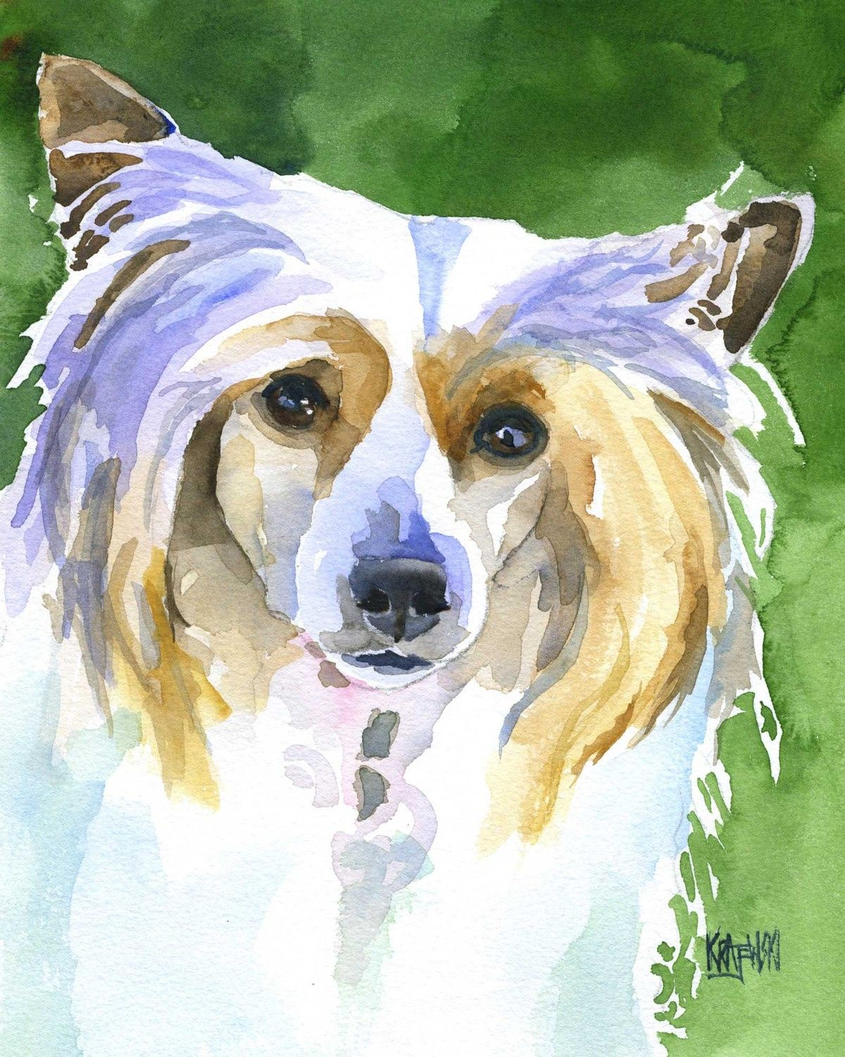 Chinese Crested Art Print Of Original Watercolor By Dogartstudio