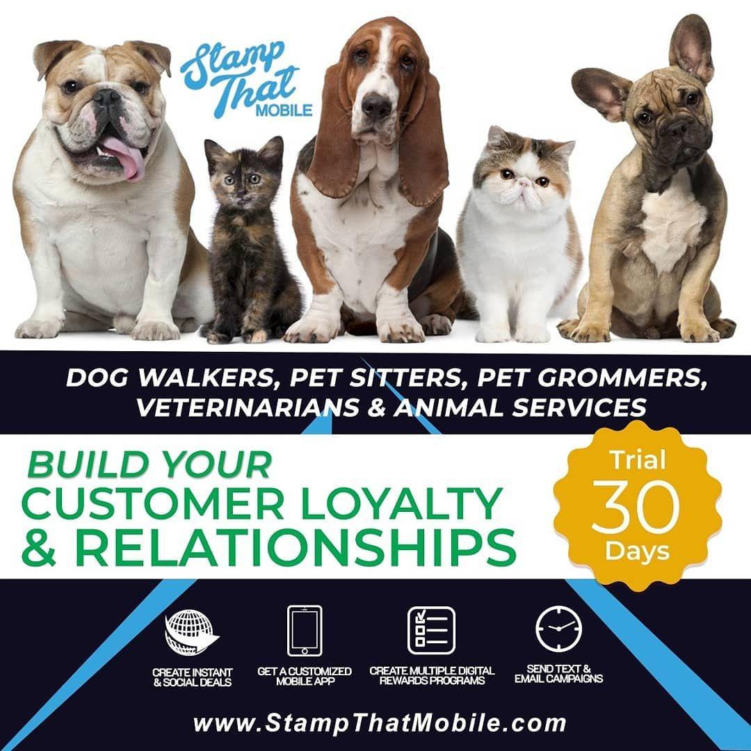 Pet groomers pet sitters dog walker animal caregivers
