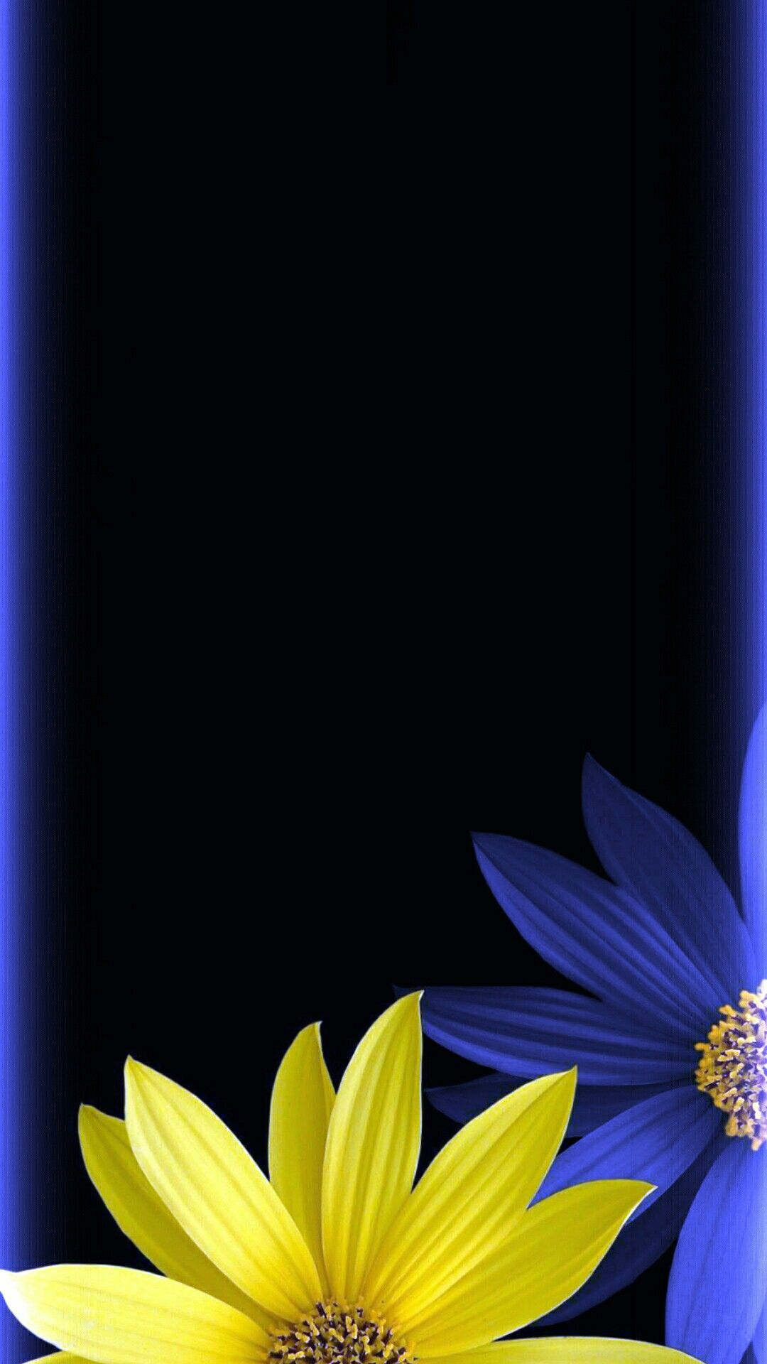 Blue Yellow Black Floral Wallpaper Black Floral Wallpaper