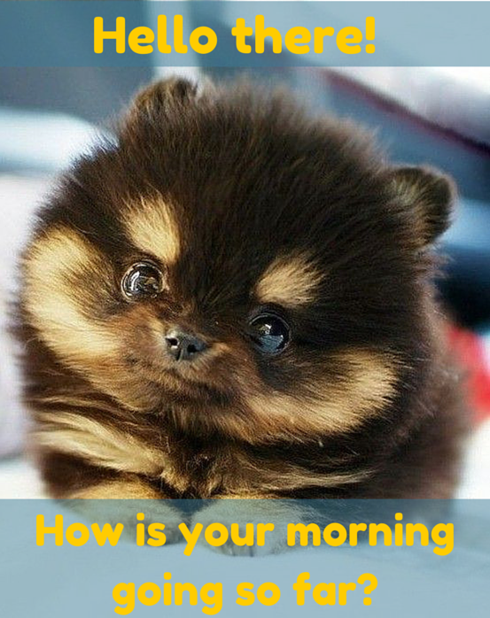 Good Morning nik. Are you ready for today. Today is gonna be awesome day.  New blessings for you nik :) | Love you meme, Sweet memes, Cute love memes