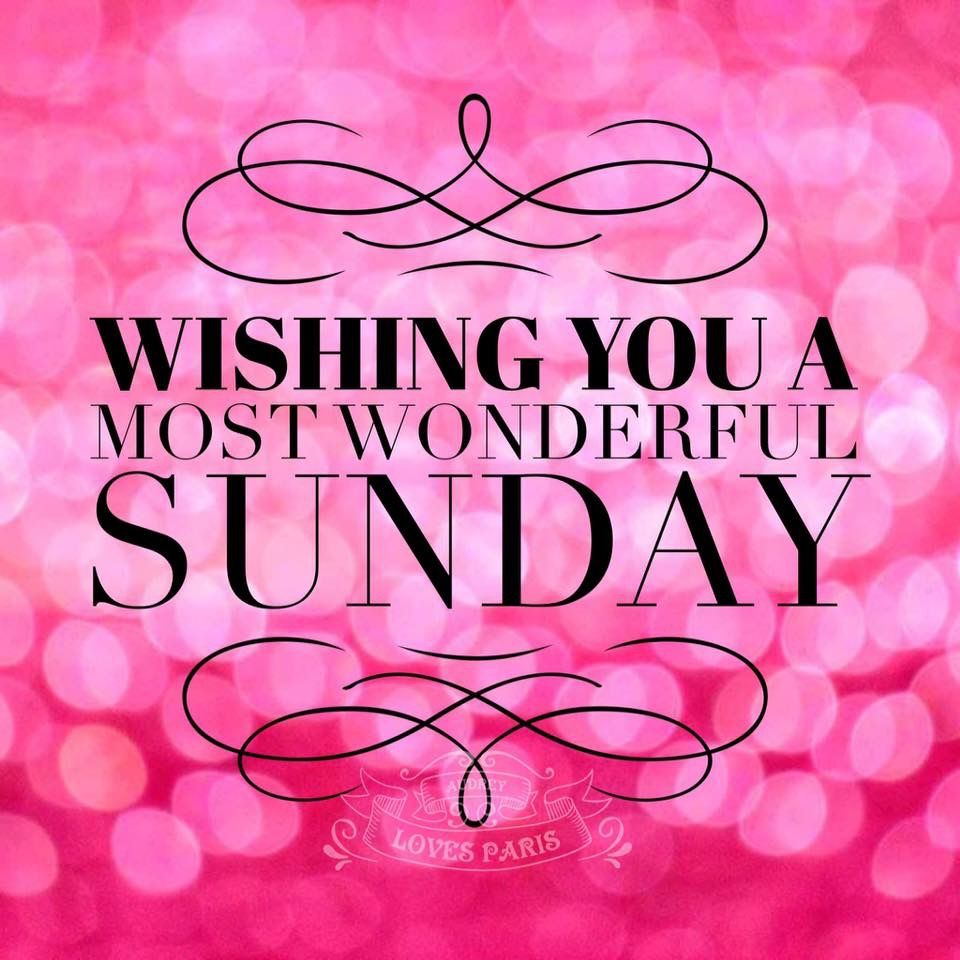 have a wonderful day sunday sunshine pinterest
