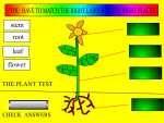 UK Plant Interactives