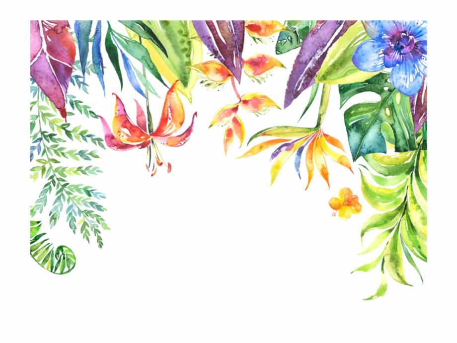 Tropical Flower Border Png Tropical Flowers Border Png Is Found On Pngtube Download It Free And Share Flower Border Png Flower Border Flower Border Clipart