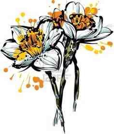 Want this narcissus as a tattoo
