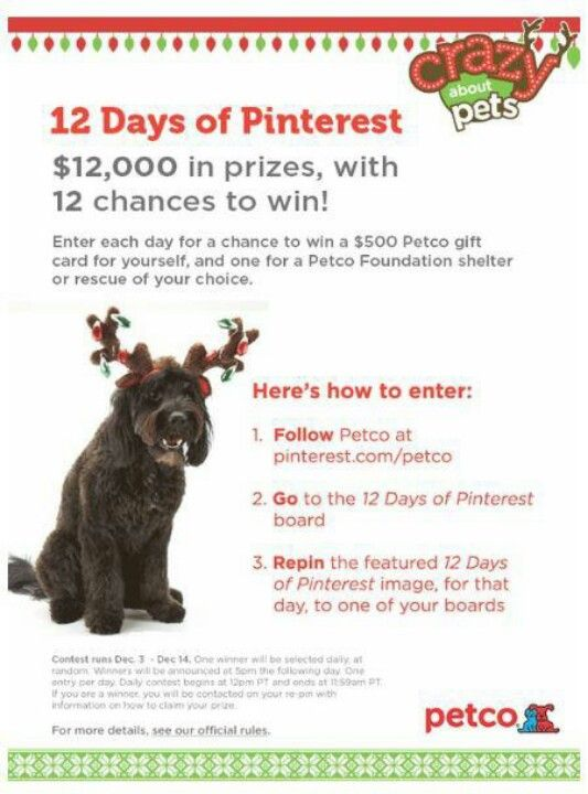 Holiday Sweeps Petco Dog Petco Dog Shots