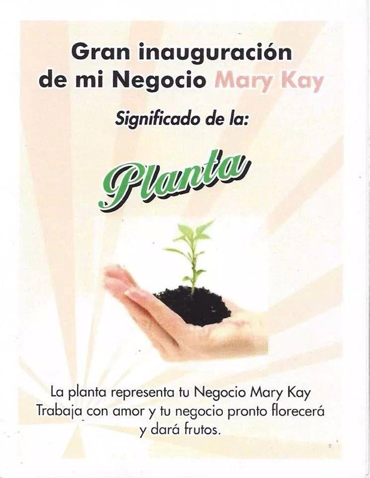 Significado Planta Mk Madrinas Mary Kay Pinterest Mary Kay