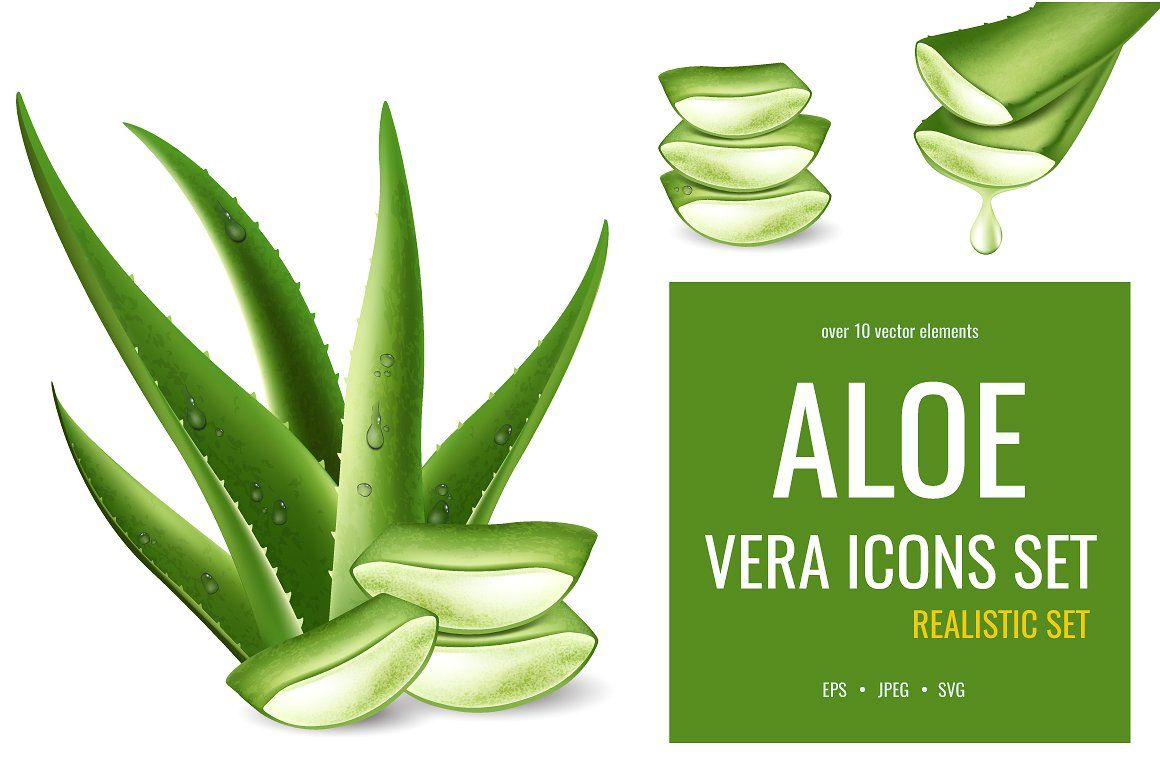 Aloe You Very Much Premium Tank Top
