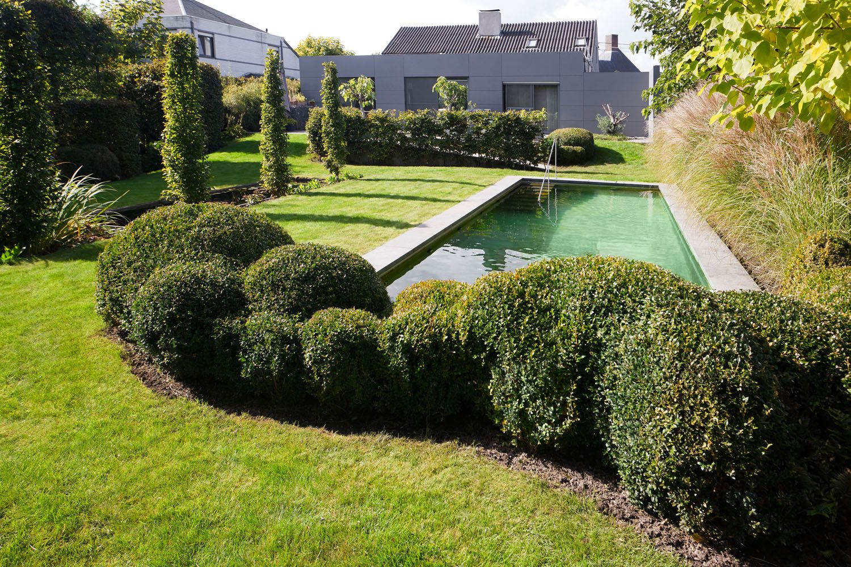 Moderne zwemvijver geïntegreerd in de tuin pond pinterest