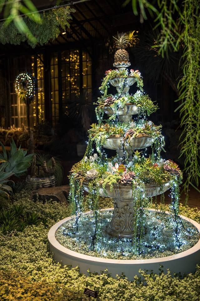 A Fountain Filled With Succulents And Fairy Lights At