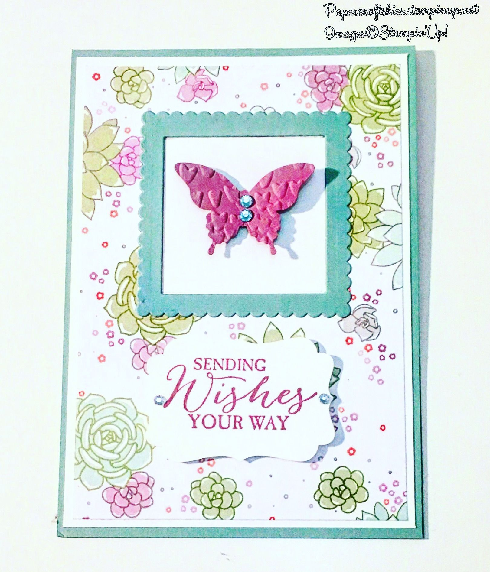 Stampin'Up! So succulent dsp butterfly basics stamp set