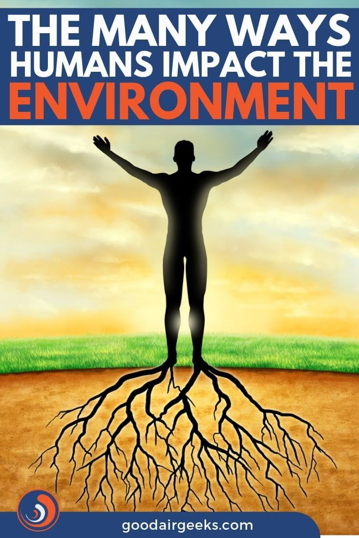 Human Impact on Environment (With images) Environment