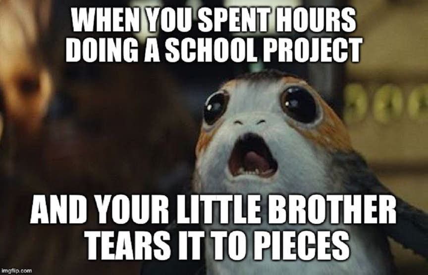 May The Porg Be With You 15 Porg Memes That Broke The Internet Memes Stupid Memes Funny Puns
