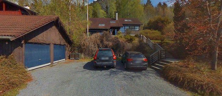 Image result for høgåslia